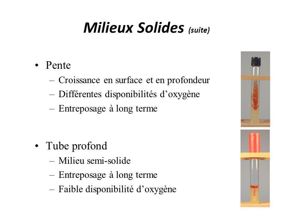 Milieux Solides (suite)