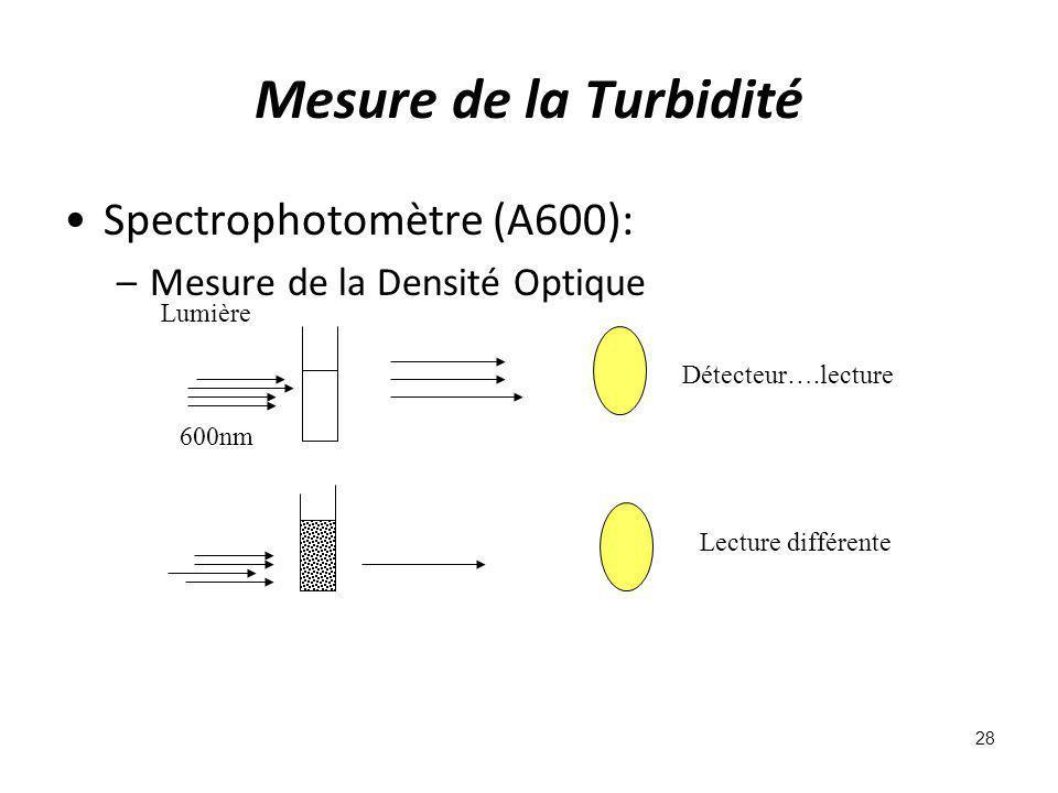 Mesure de la Turbidité Spectrophotomètre (A600):