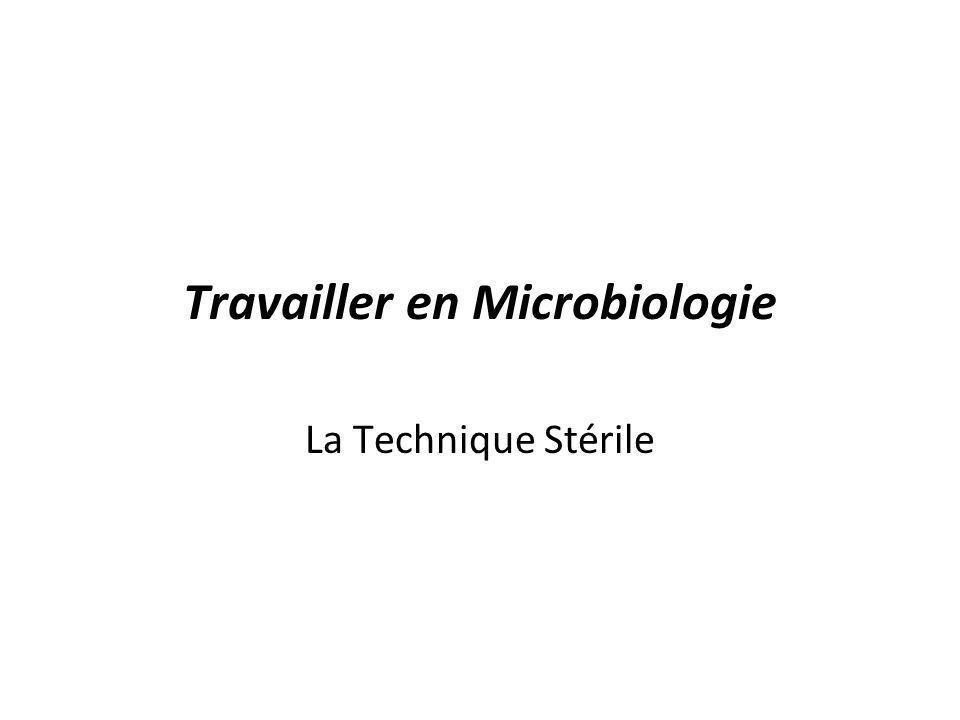 Travailler en Microbiologie