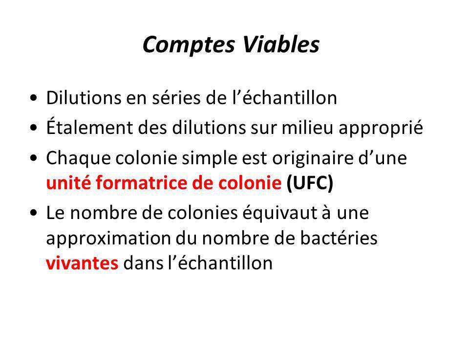 Comptes Viables Dilutions en séries de l'échantillon