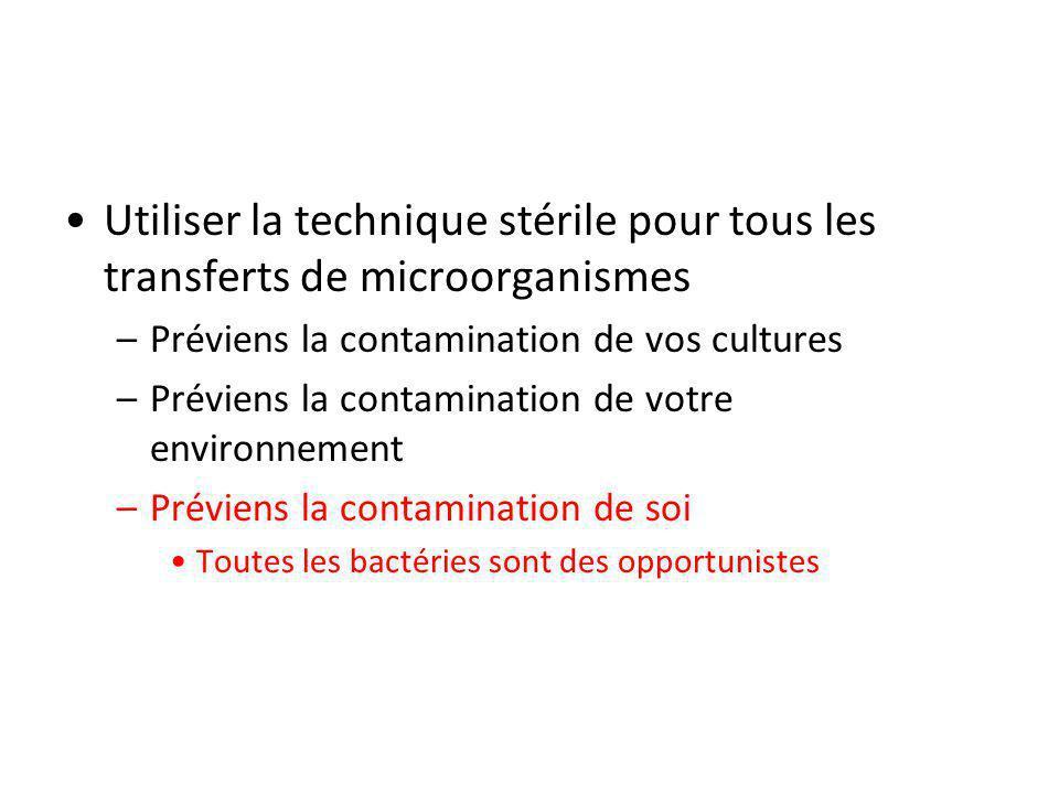 Utiliser la technique stérile pour tous les transferts de microorganismes