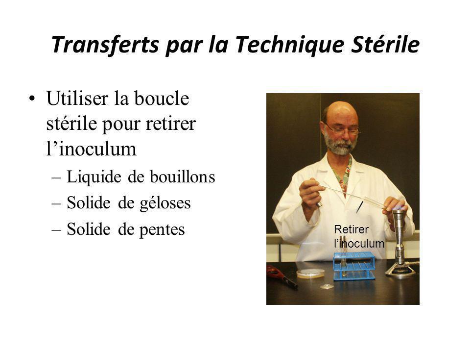 Transferts par la Technique Stérile