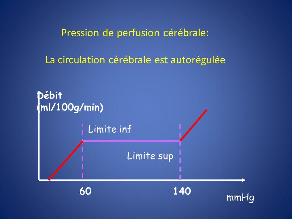 Pression de perfusion cérébrale: La circulation cérébrale est autorégulée