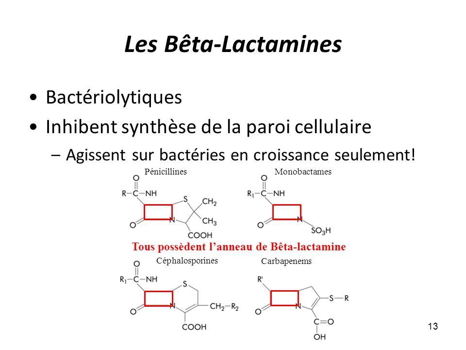 Les Bêta-Lactamines Bactériolytiques