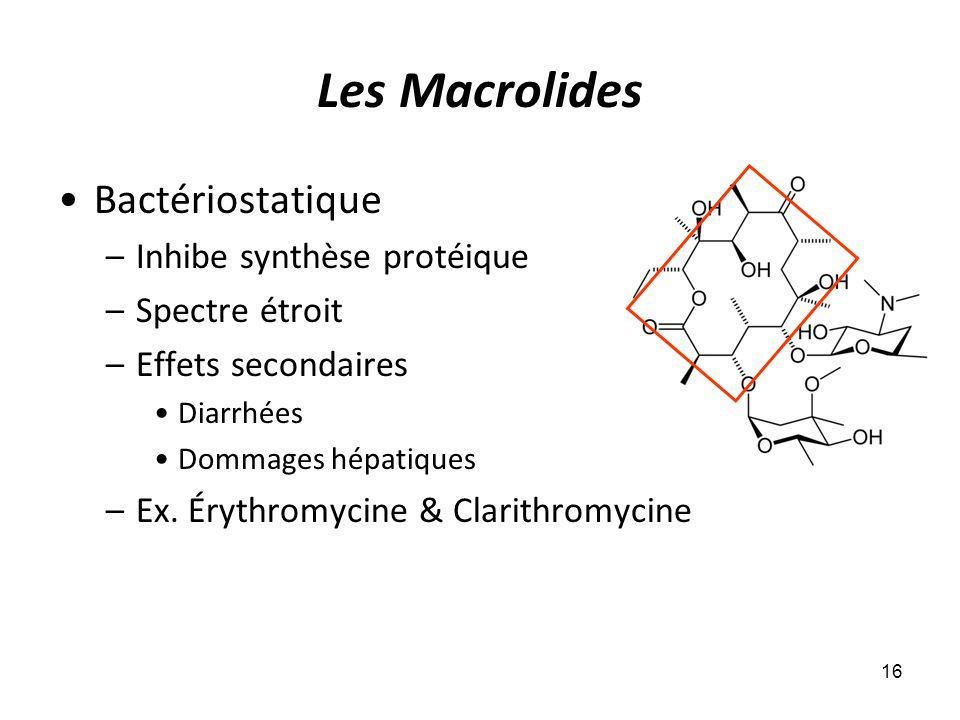 Les Macrolides Bactériostatique Inhibe synthèse protéique