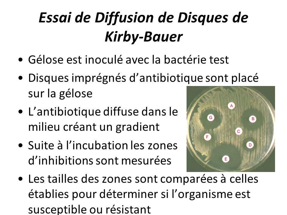 Essai de Diffusion de Disques de Kirby-Bauer