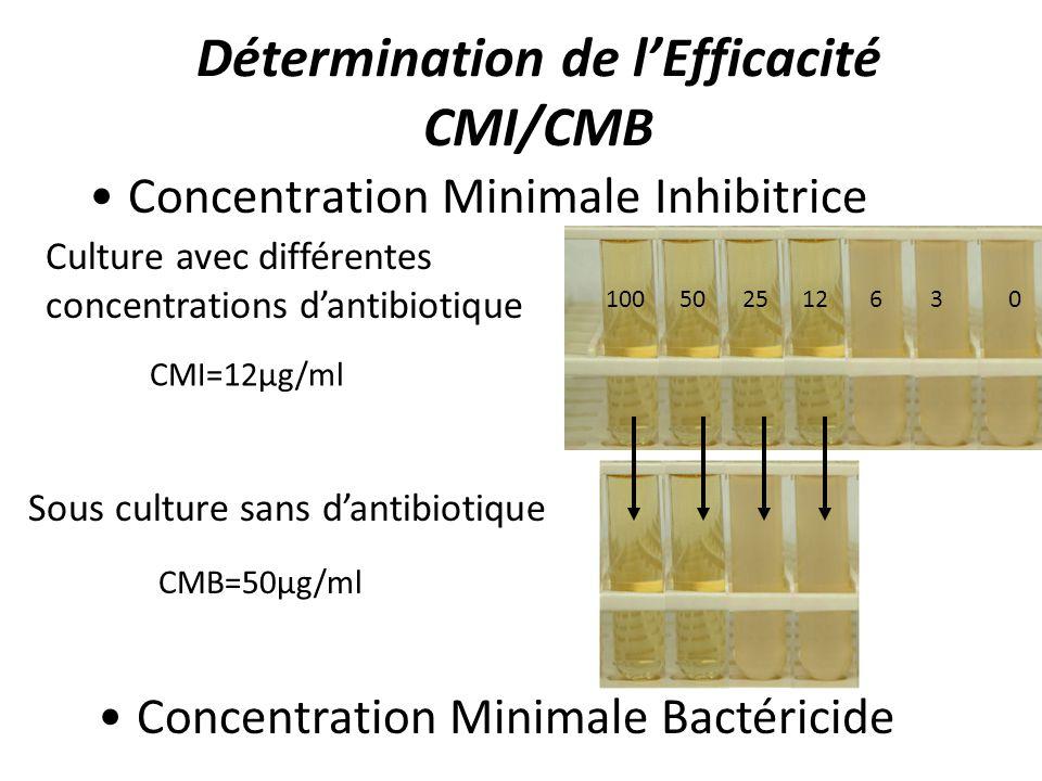 Détermination de l'Efficacité CMI/CMB