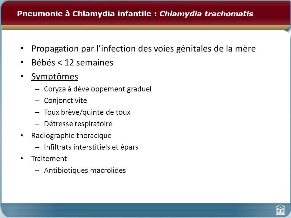 Pneumonie à Chlamydia infantile : Chlamydia trachomatis