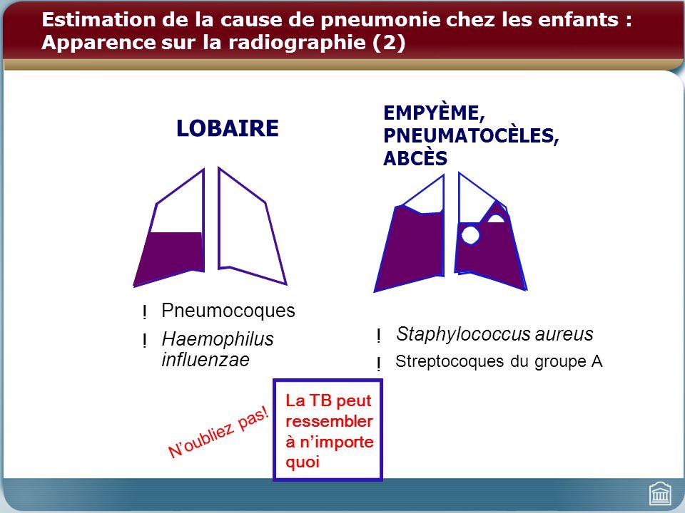 Estimation de la cause de pneumonie chez les enfants : Apparence sur la radiographie (2)