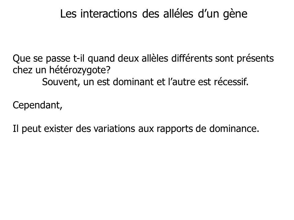 Les interactions des alléles d'un gène