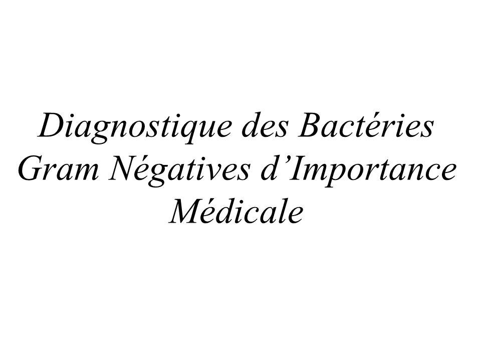 Diagnostique des Bactéries Gram Négatives d'Importance Médicale
