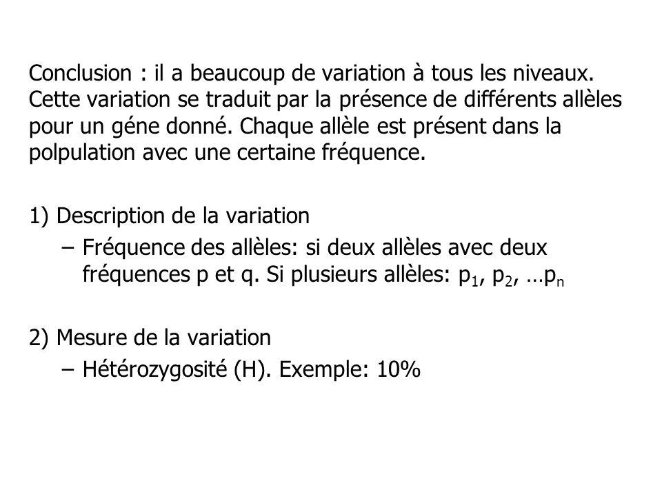 Conclusion : il a beaucoup de variation à tous les niveaux
