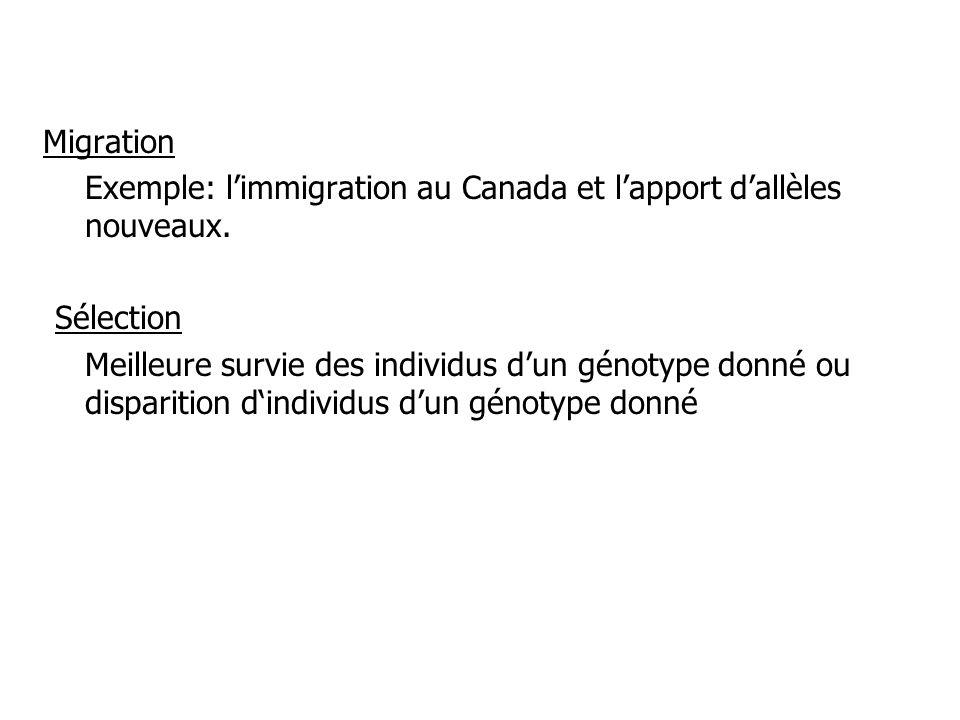 Migration Exemple: l'immigration au Canada et l'apport d'allèles nouveaux. Sélection.