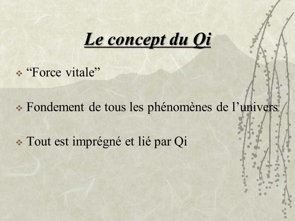 Le concept du Qi Force vitale