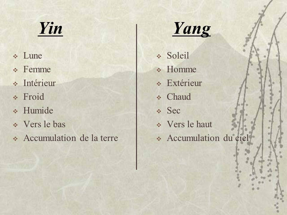 Yin Yang Lune Femme Intérieur Froid Humide Vers le bas