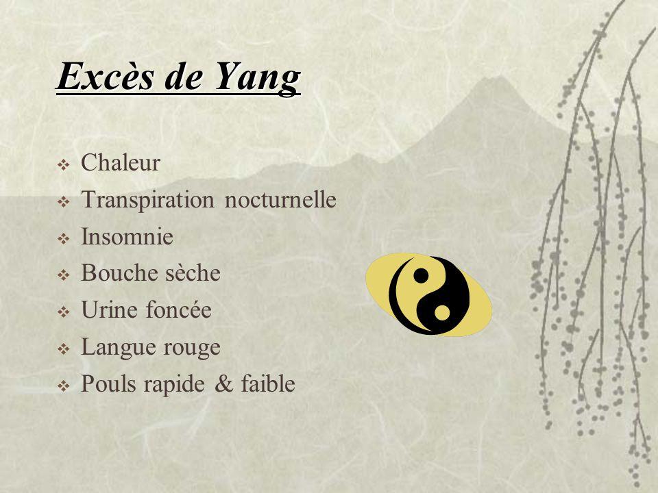 Excès de Yang Chaleur Transpiration nocturnelle Insomnie Bouche sèche
