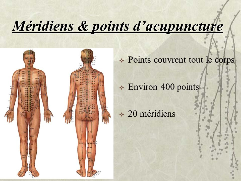 Méridiens & points d'acupuncture