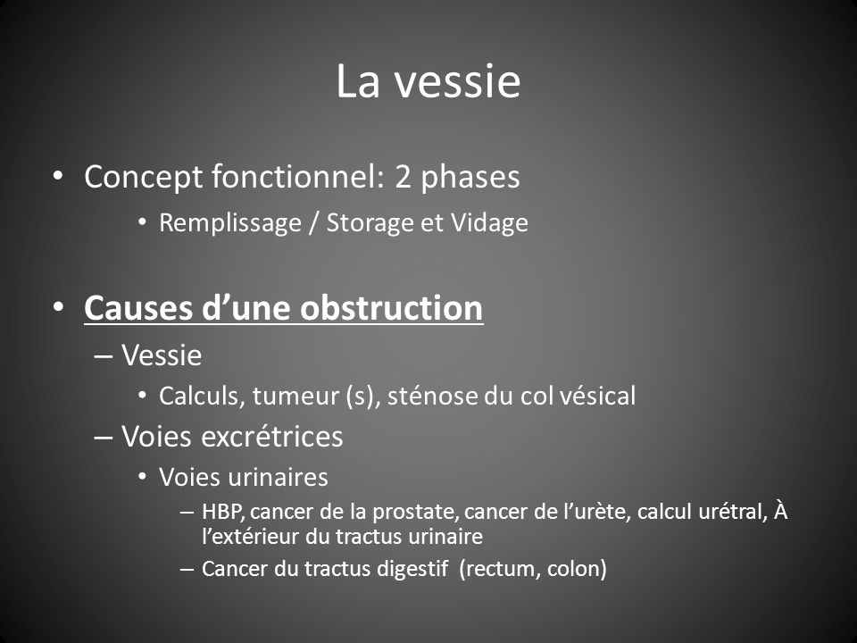 La vessie Causes d'une obstruction Concept fonctionnel: 2 phases