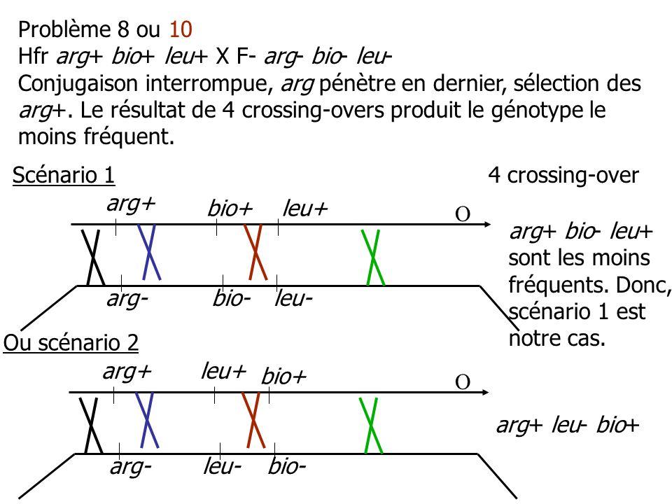 Problème 8 ou 10 Hfr arg+ bio+ leu+ X F- arg- bio- leu-