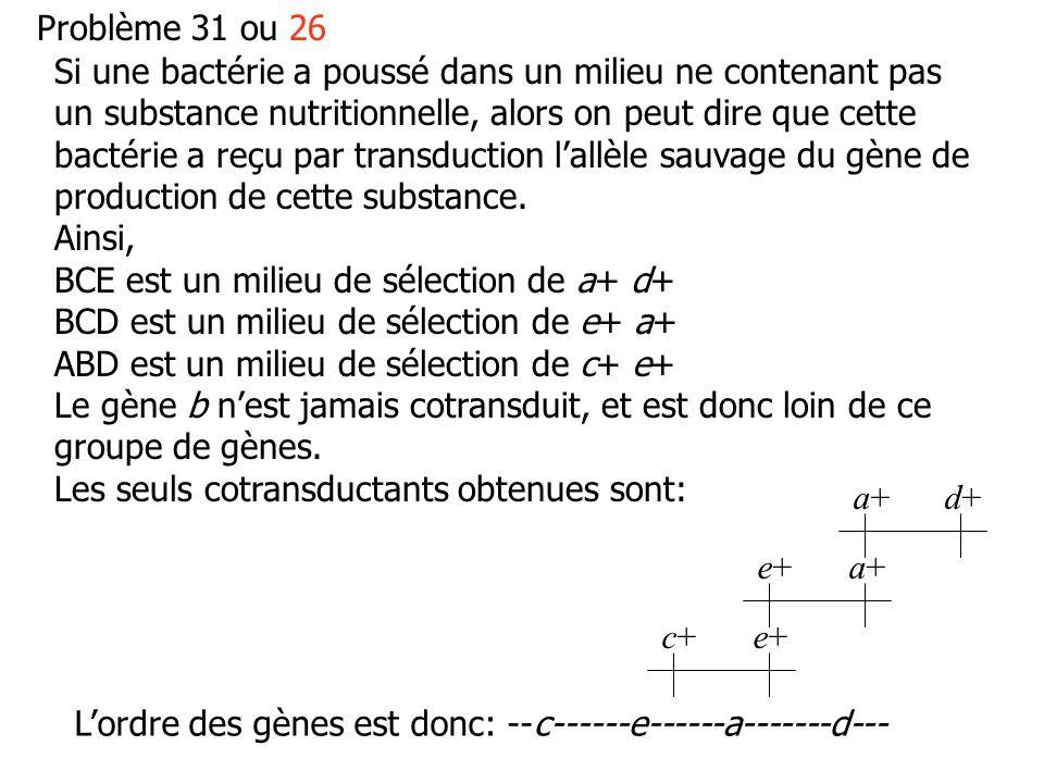 Problème 31 ou 26