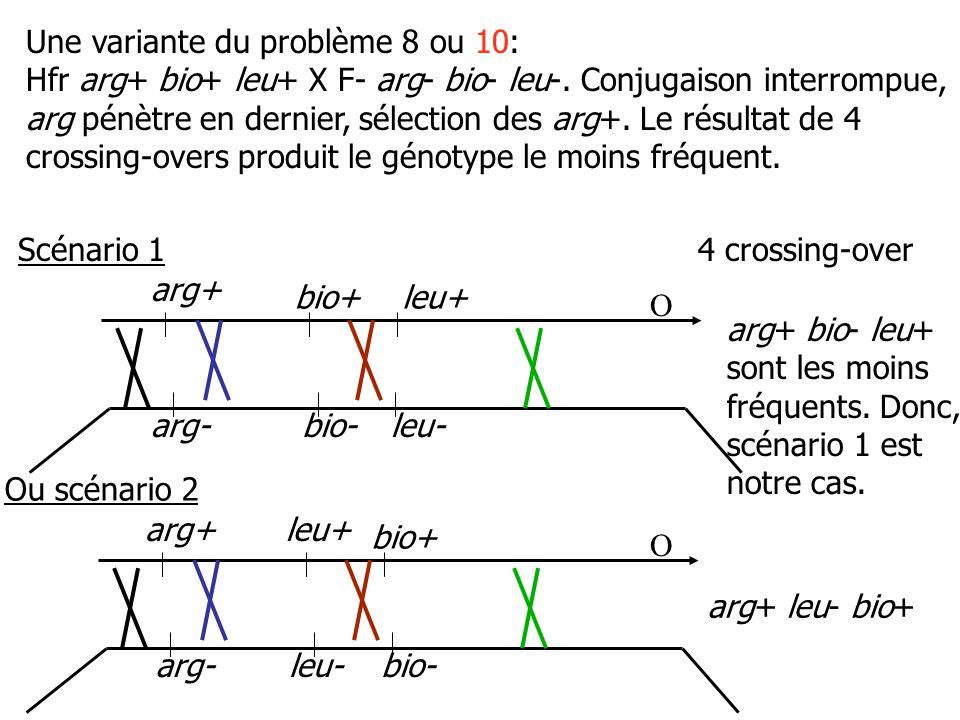Une variante du problème 8 ou 10: