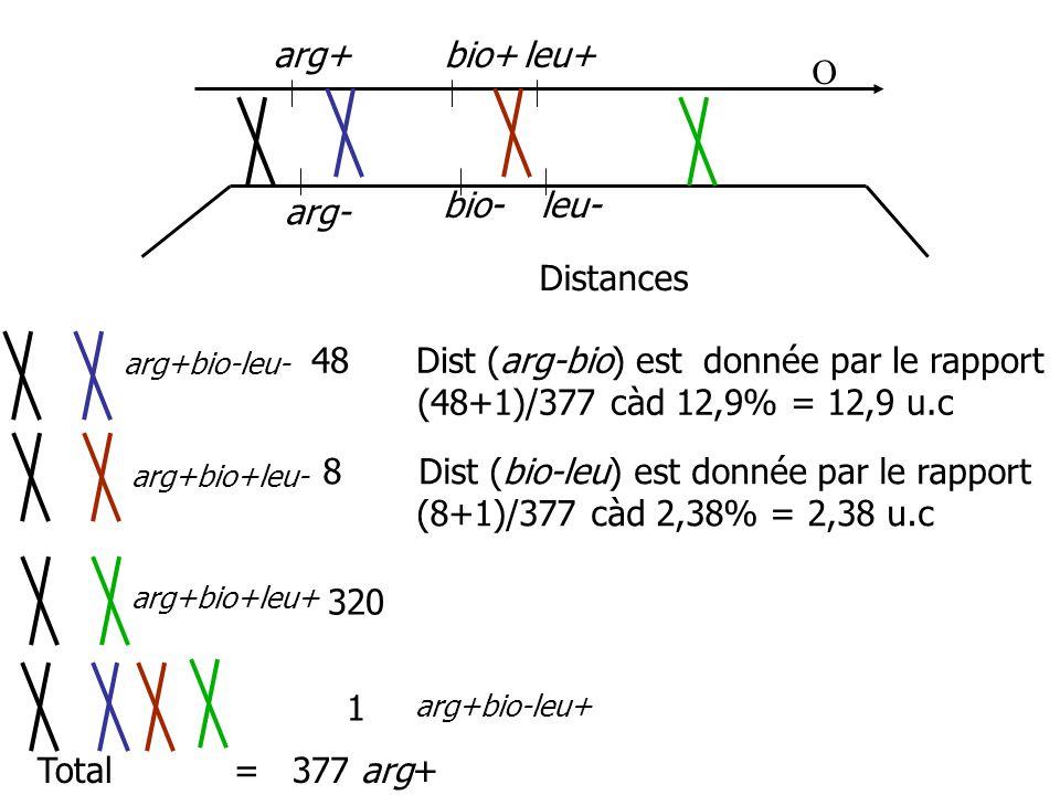 arg+ bio+ leu+ O bio- leu- arg- Distances