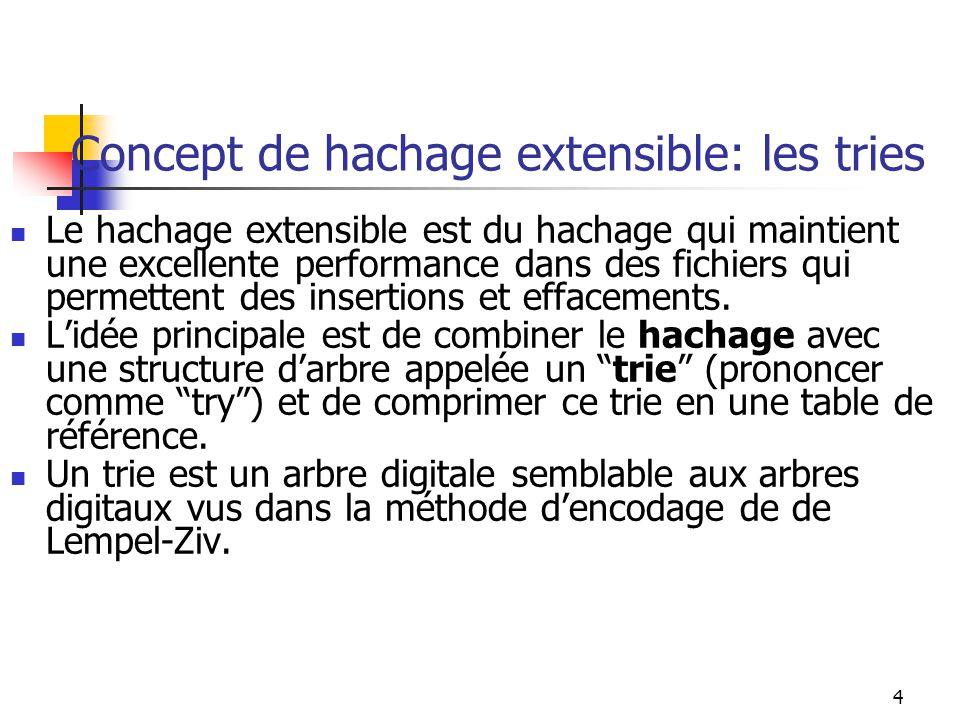 Concept de hachage extensible: les tries
