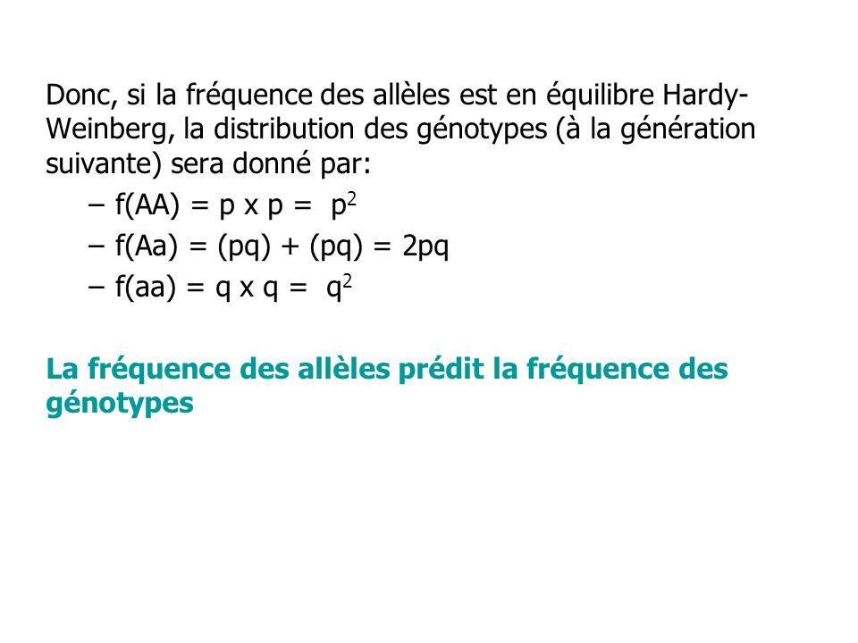 Donc, si la fréquence des allèles est en équilibre Hardy-Weinberg, la distribution des génotypes (à la génération suivante) sera donné par: