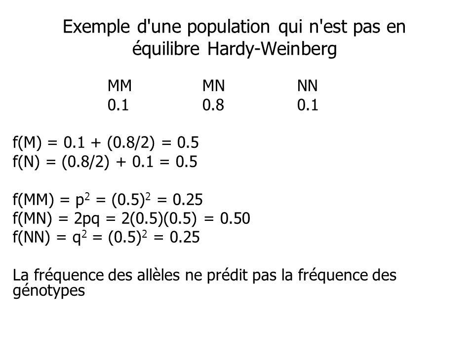 Exemple d une population qui n est pas en équilibre Hardy-Weinberg