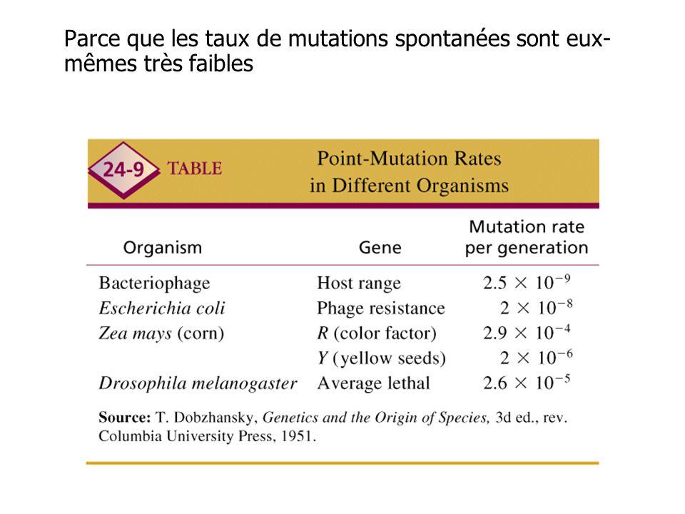 Parce que les taux de mutations spontanées sont eux-mêmes très faibles