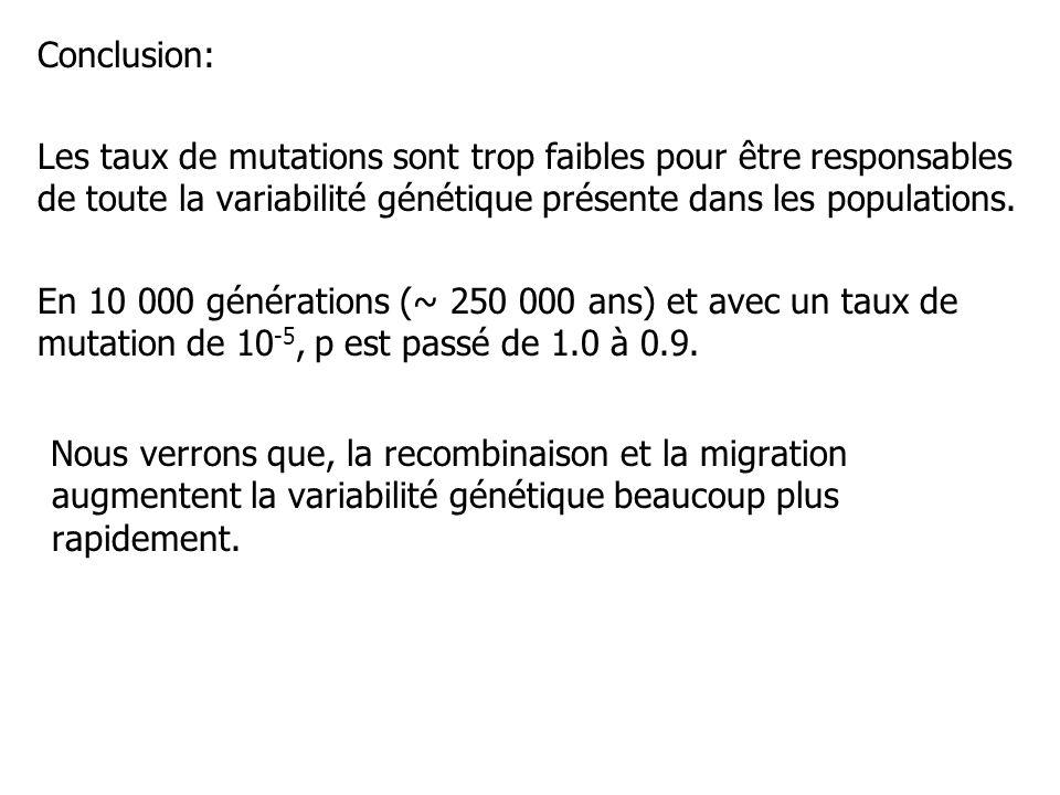 Conclusion: Les taux de mutations sont trop faibles pour être responsables de toute la variabilité génétique présente dans les populations.
