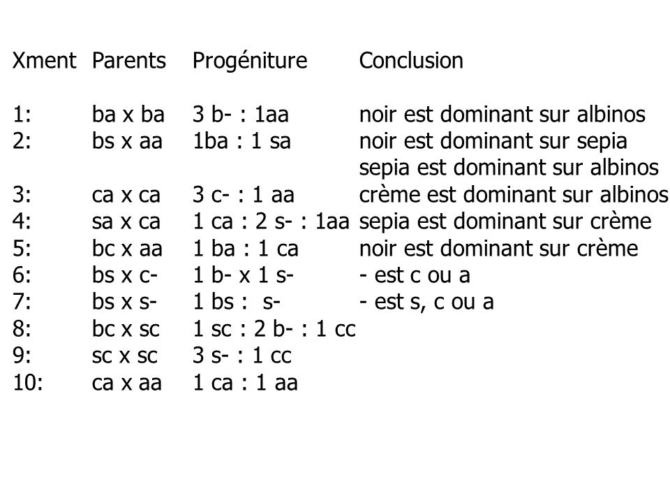 Xment Parents Progéniture Conclusion