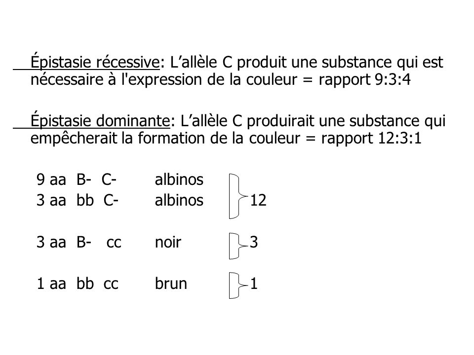 Épistasie récessive: L'allèle C produit une substance qui est nécessaire à l expression de la couleur = rapport 9:3:4