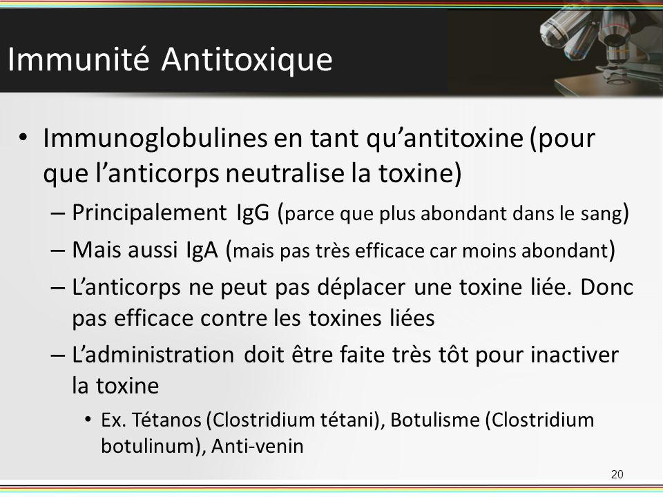 Immunité Antitoxique Immunoglobulines en tant qu'antitoxine (pour que l'anticorps neutralise la toxine)