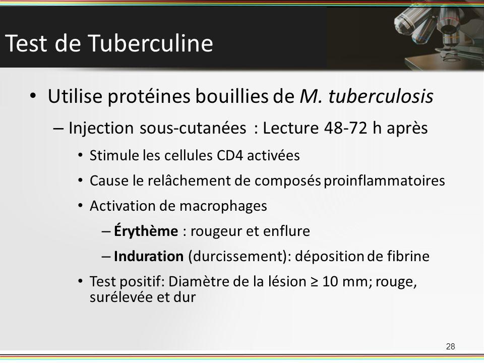 Test de Tuberculine Utilise protéines bouillies de M. tuberculosis