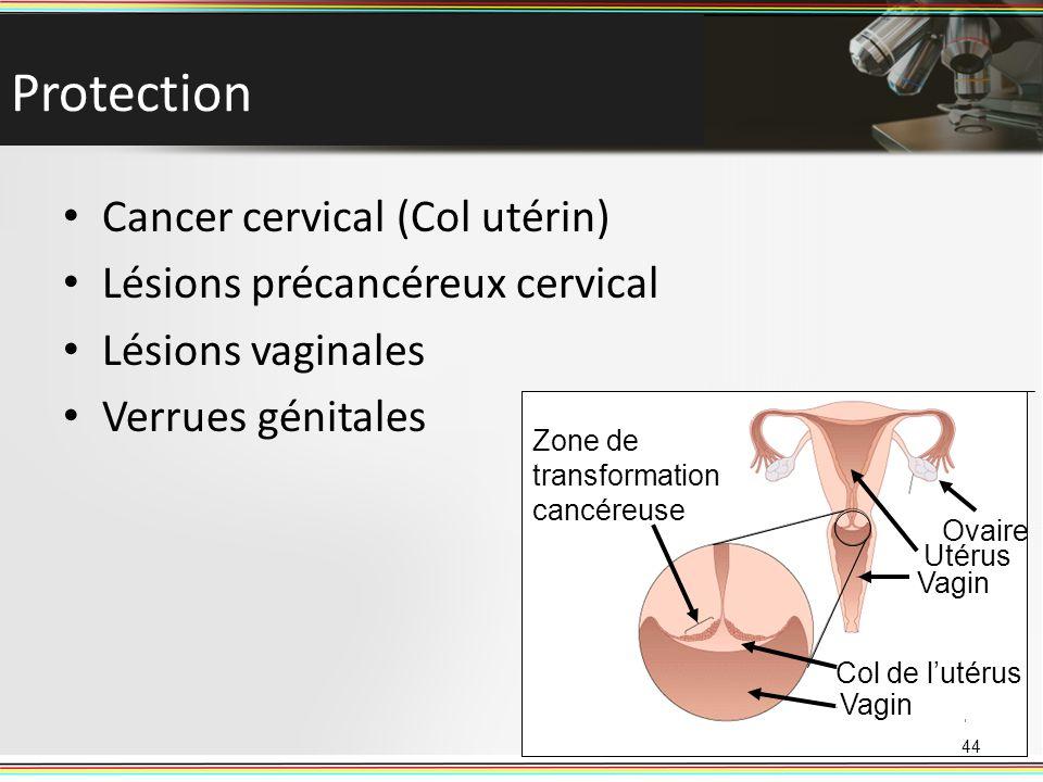 Protection Cancer cervical (Col utérin) Lésions précancéreux cervical