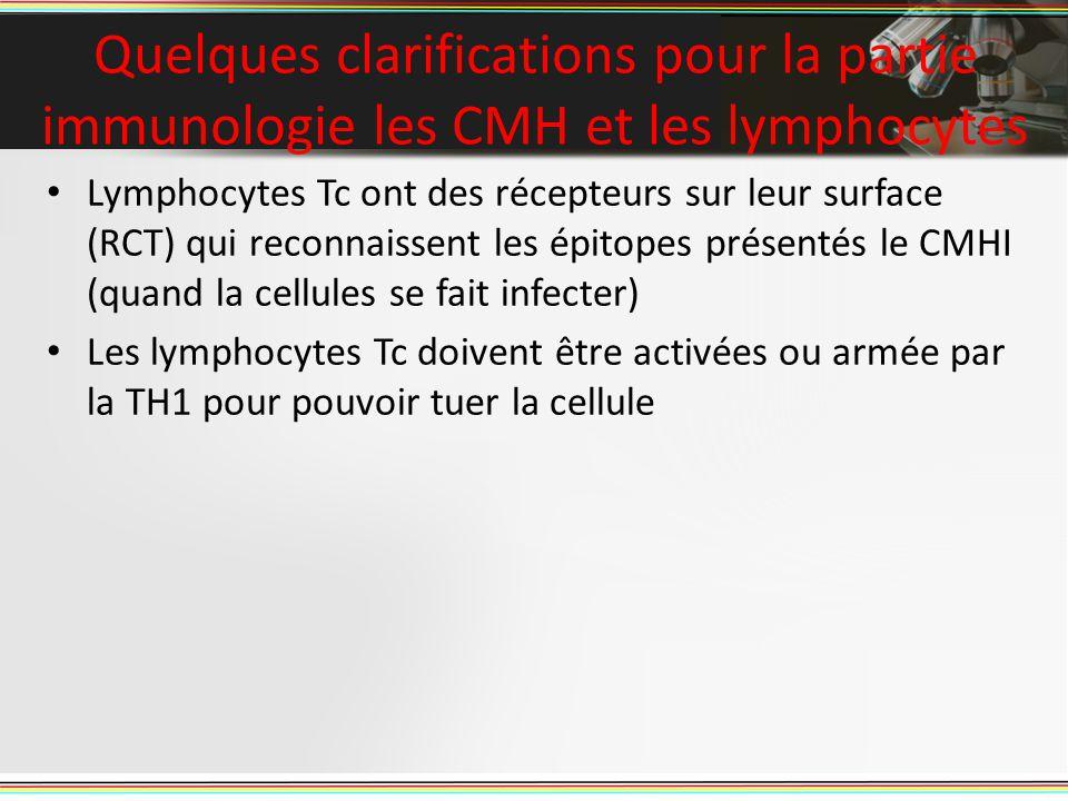 Quelques clarifications pour la partie immunologie les CMH et les lymphocytes