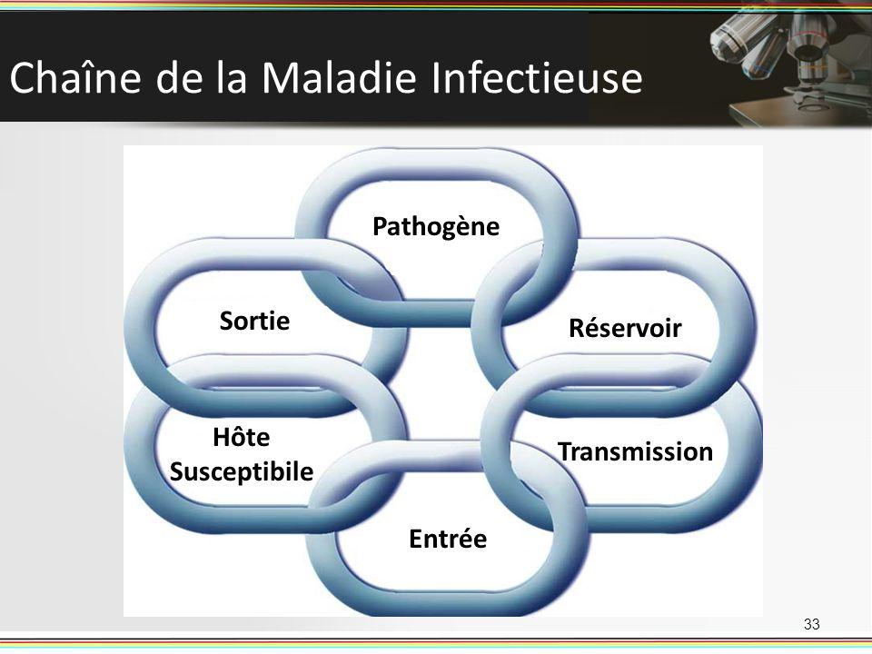Chaîne de la Maladie Infectieuse