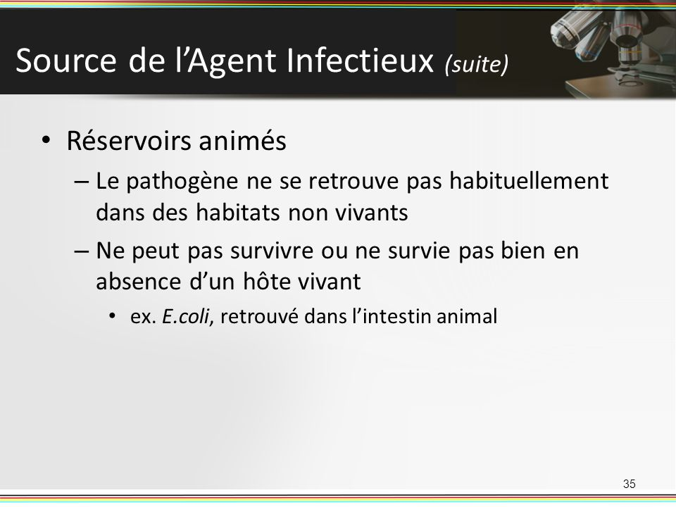 Source de l'Agent Infectieux (suite)