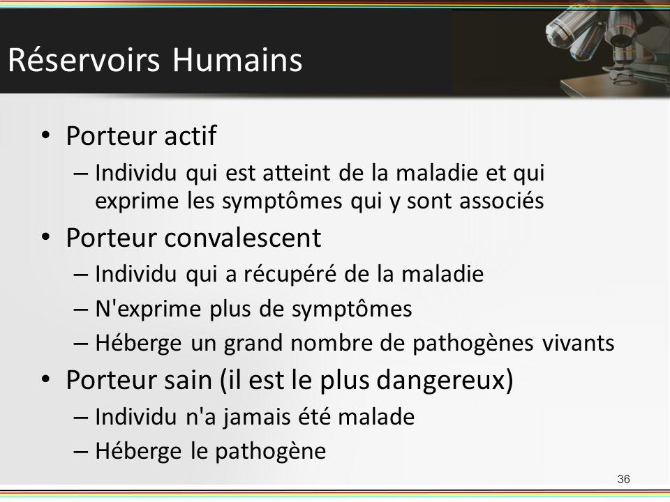 Réservoirs Humains Porteur actif Porteur convalescent