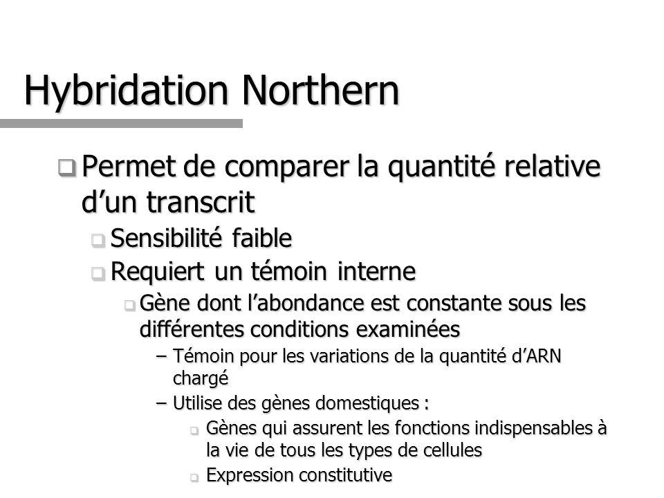Hybridation Northern Permet de comparer la quantité relative d'un transcrit. Sensibilité faible. Requiert un témoin interne.
