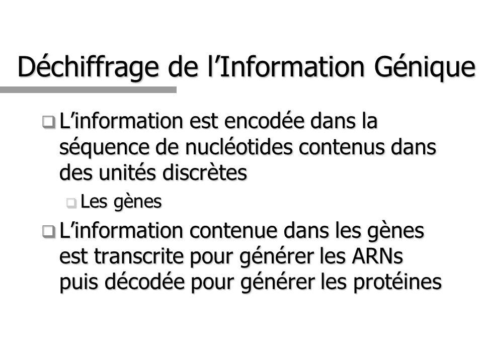 Déchiffrage de l'Information Génique