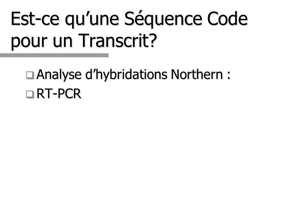 Est-ce qu'une Séquence Code pour un Transcrit