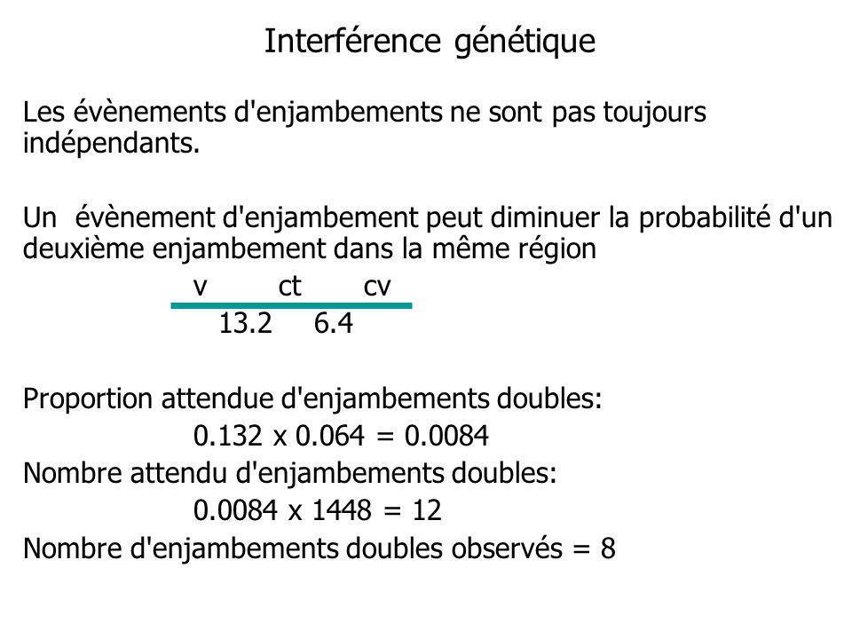 Interférence génétique