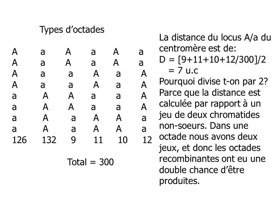 Types d'octades A a A a A a. A a a A a A.