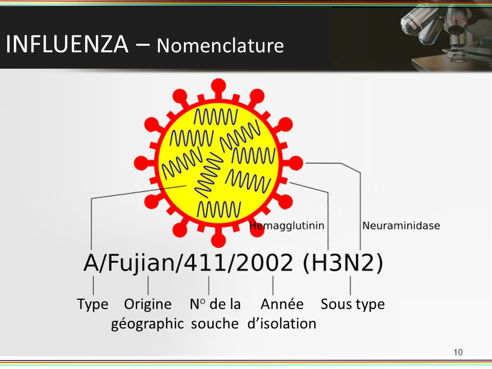 INFLUENZA – Nomenclature