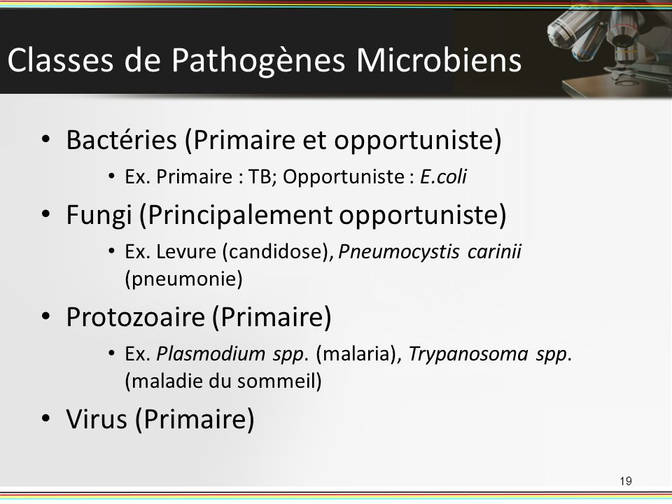 Classes de Pathogènes Microbiens