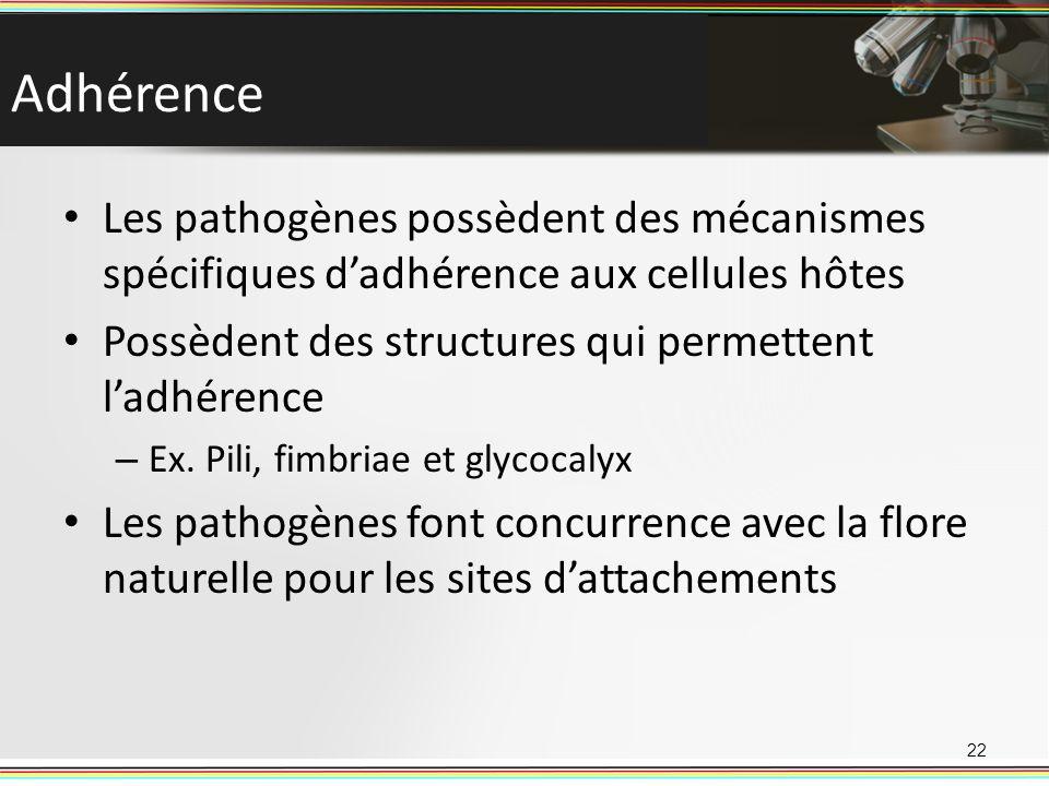 Adhérence Les pathogènes possèdent des mécanismes spécifiques d'adhérence aux cellules hôtes. Possèdent des structures qui permettent l'adhérence.