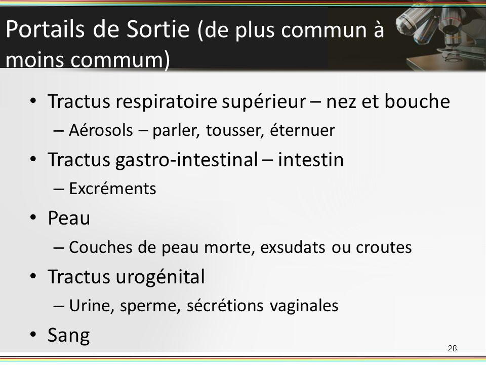 Portails de Sortie (de plus commun à moins commum)