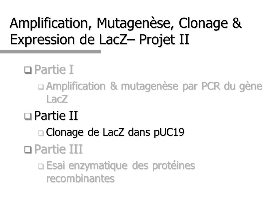 Amplification, Mutagenèse, Clonage & Expression de LacZ– Projet II